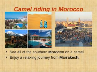 Camel riding in Morocco See all of the southern Morocco on a camel. Enjoy a r