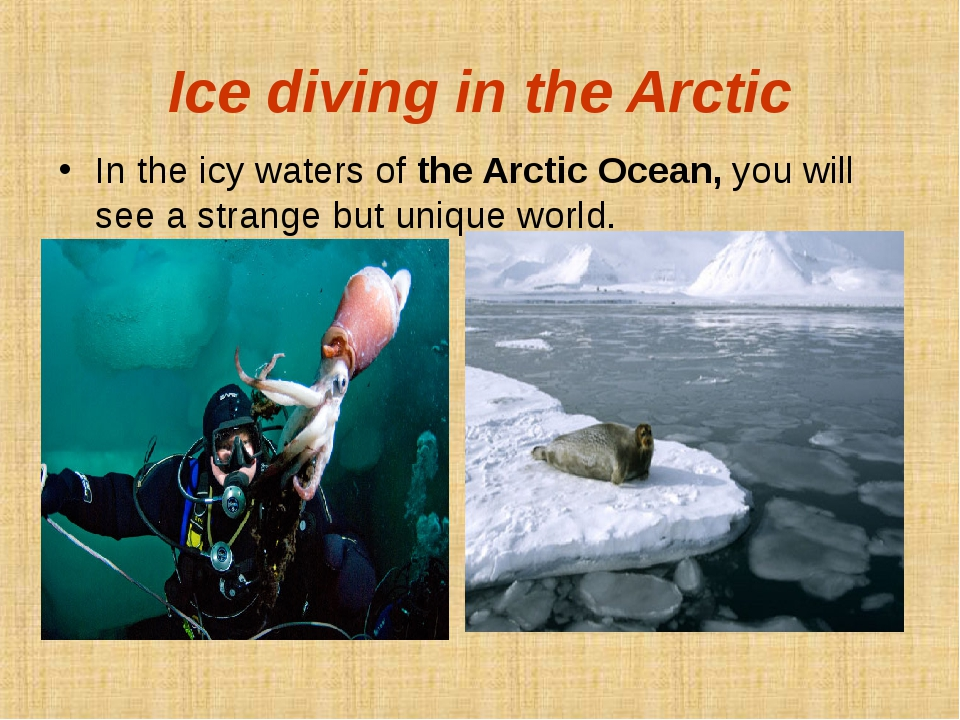 Ice diving in the Arctic In the icy waters of the Arctic Ocean, you will see...