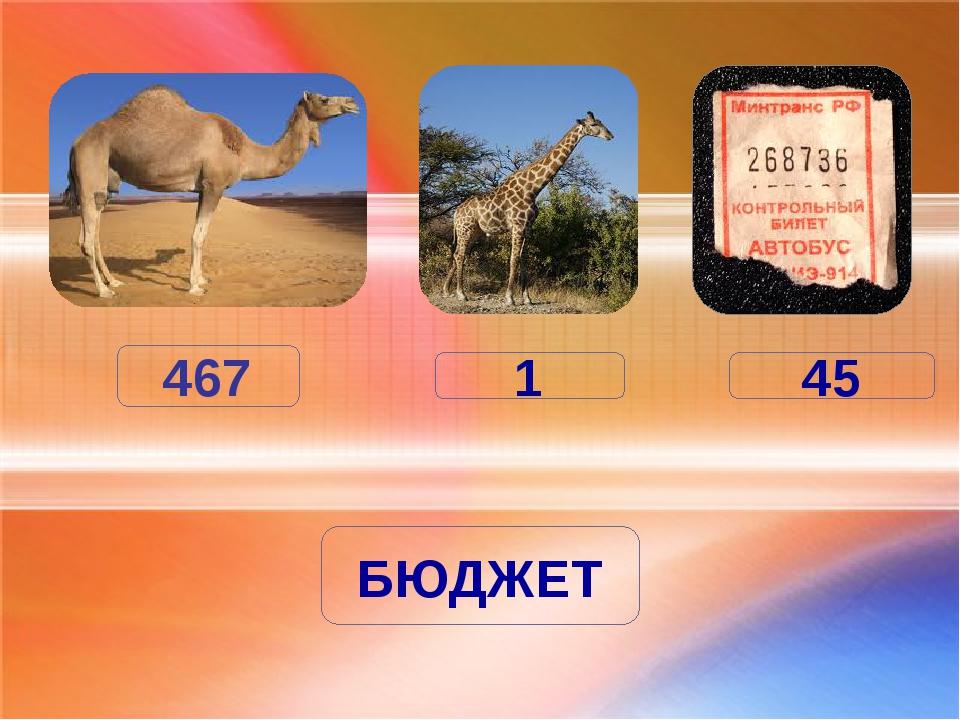 467 1 БЮДЖЕТ 45