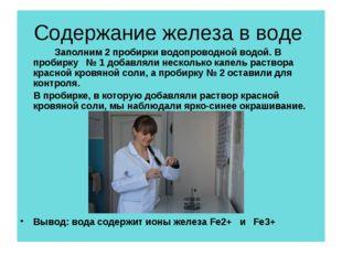 Содержание железа в воде Заполним 2 пробирки водопроводной водой. В пробирк