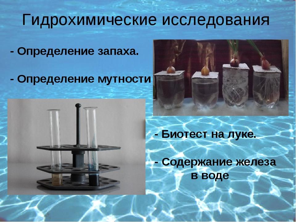 Гидрохимические исследования - Определение запаха. - Определение мутности - Б...