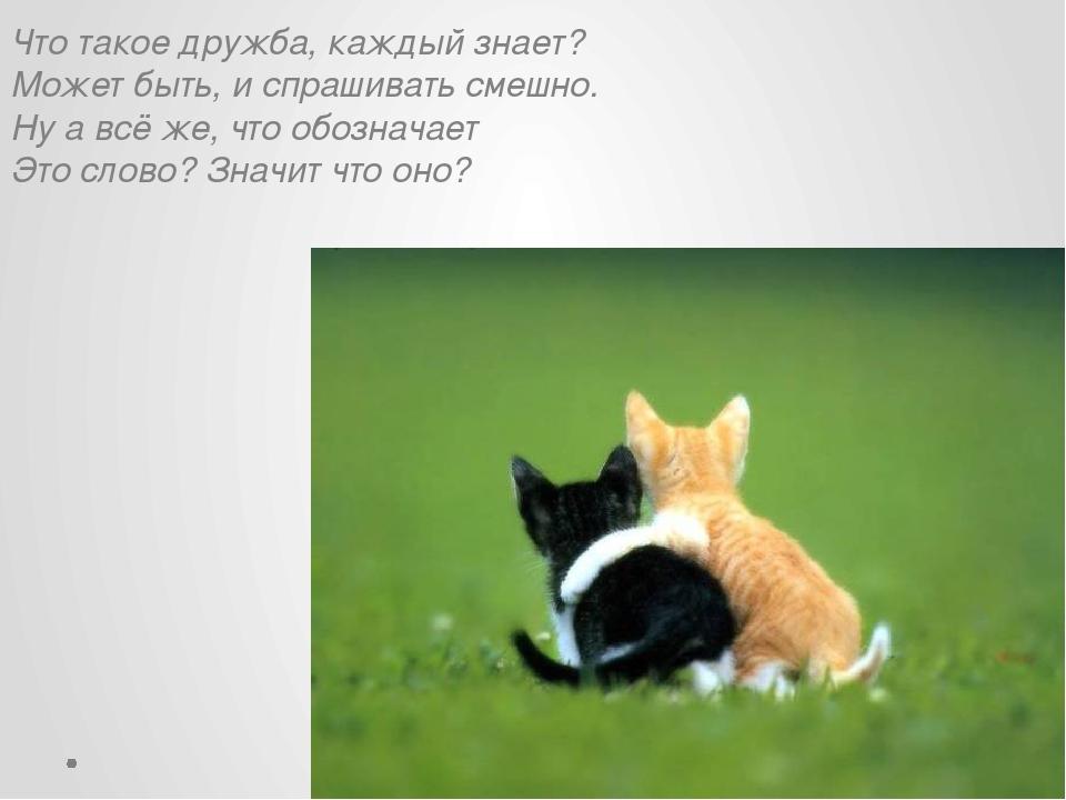 Что такое дружба, каждый знает? Может быть, и спрашивать смешно. Ну а всё же,...