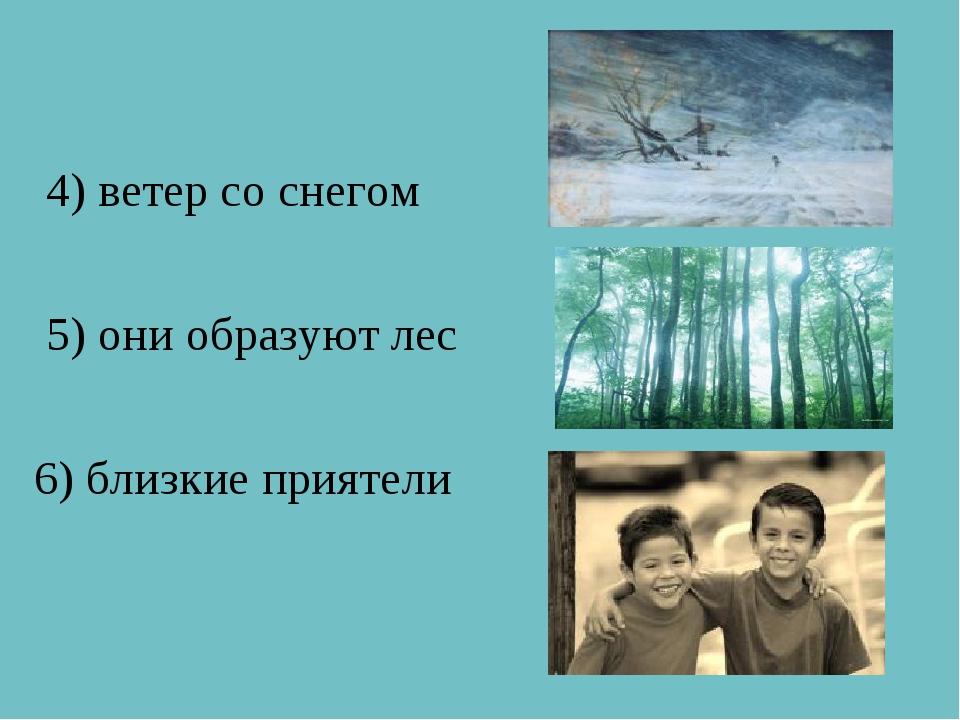 4) ветер со снегом 5) они образуют лес 6) близкие приятели