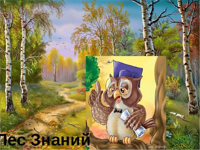 Лес Знаний