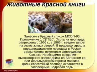 Животные Красной книги Занесен в Красный список МСОП-96, Приложение 1 СИТЕС.