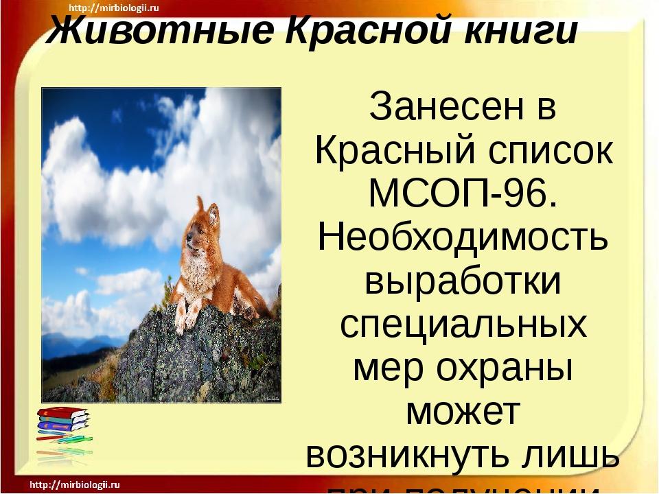 Животные Красной книги Занесен в Красный список МСОП-96. Необходимость вырабо...