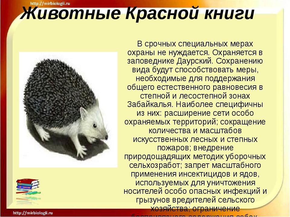 Животные Красной книги В срочных специальных мерах охраны не нуждается. Охран...