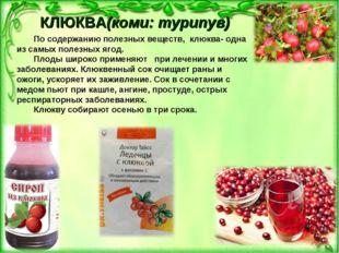 КЛЮКВА(коми: турипув) По содержанию полезных веществ, клюква- одна из самых