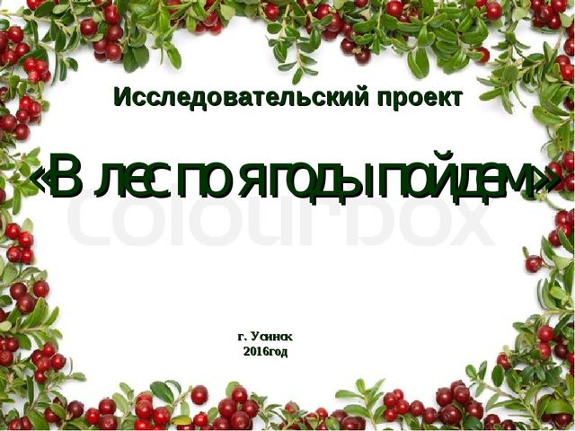 Исследовательский проект «В лес по ягоды пойдем» г. Усинск 2016год