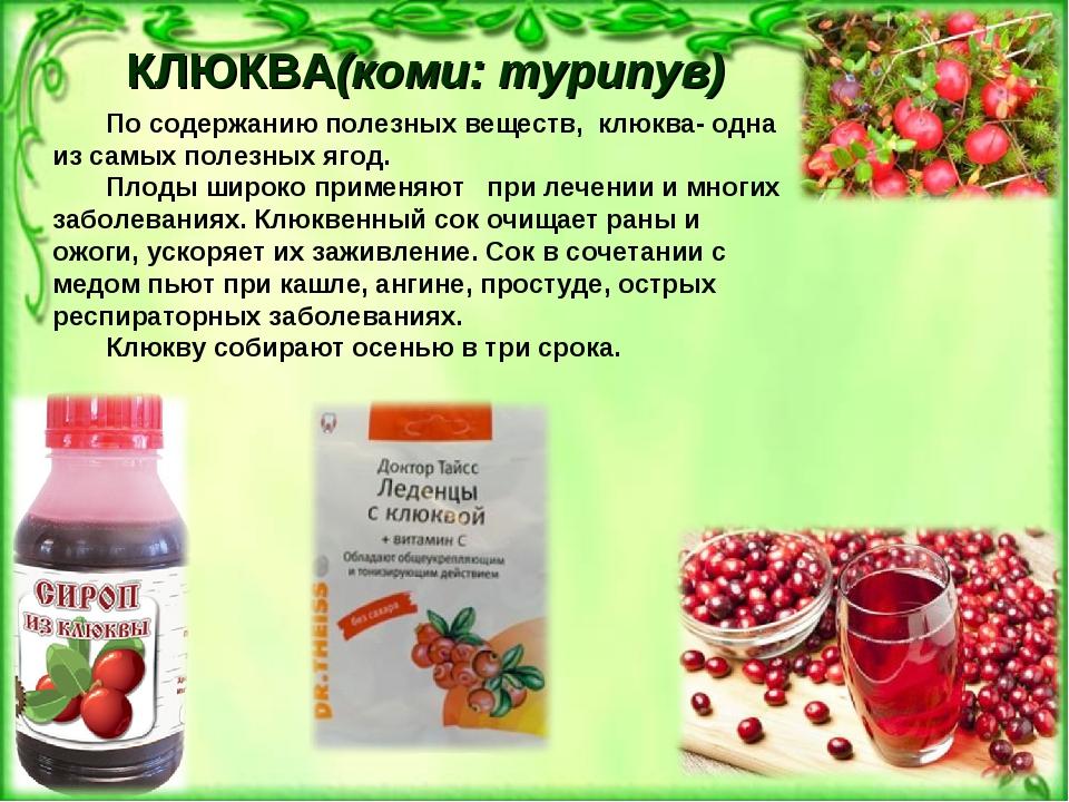 КЛЮКВА(коми: турипув) По содержанию полезных веществ, клюква- одна из самых...