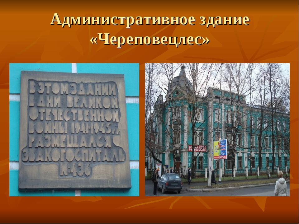 Административное здание «Череповецлес»