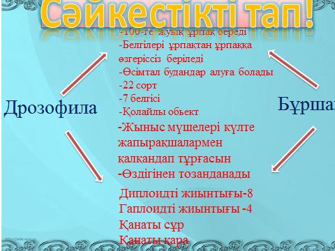 hello_html_m711715fa.png