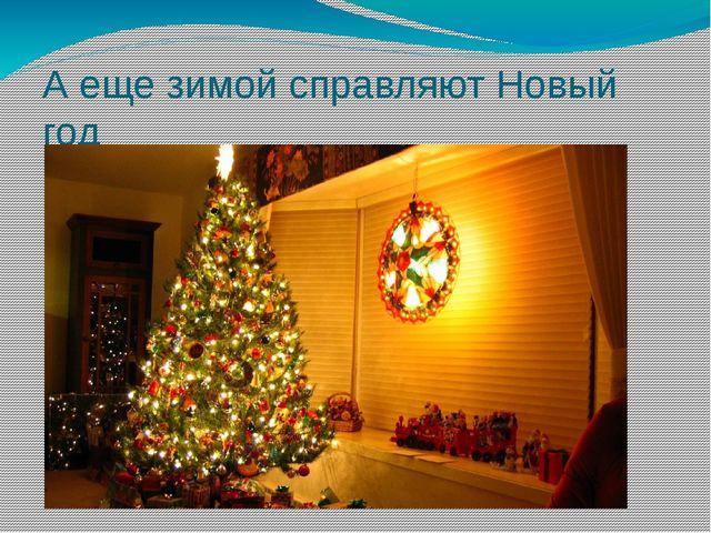 А еще зимой справляют Новый год