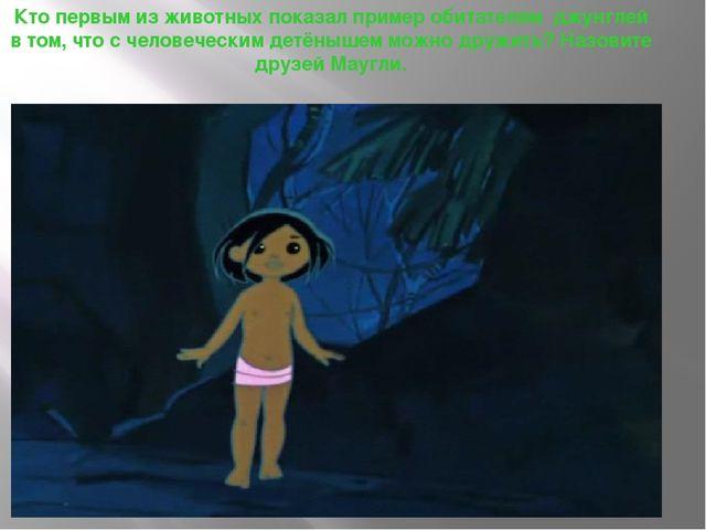 Кто первым из животных показал пример обитателям джунглей в том, что с челове...