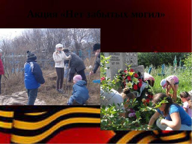 Акция «Нет забытых могил»