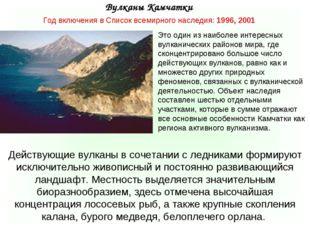 Год включения в Список всемирного наследия: 1996, 2001 Вулканы Камчатки Дейст