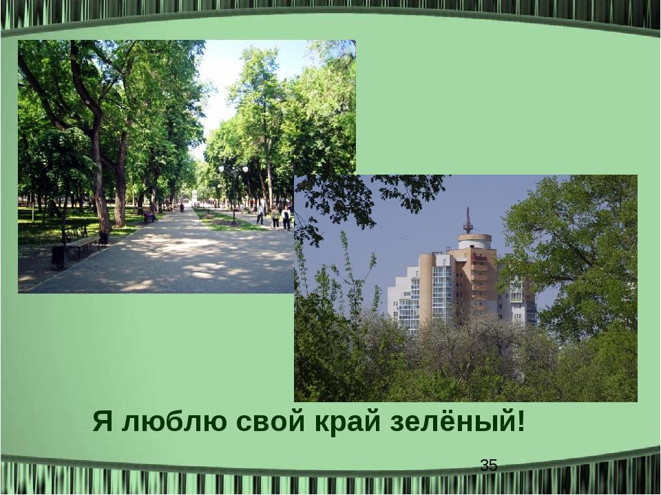 Я люблю свой край зелёный!