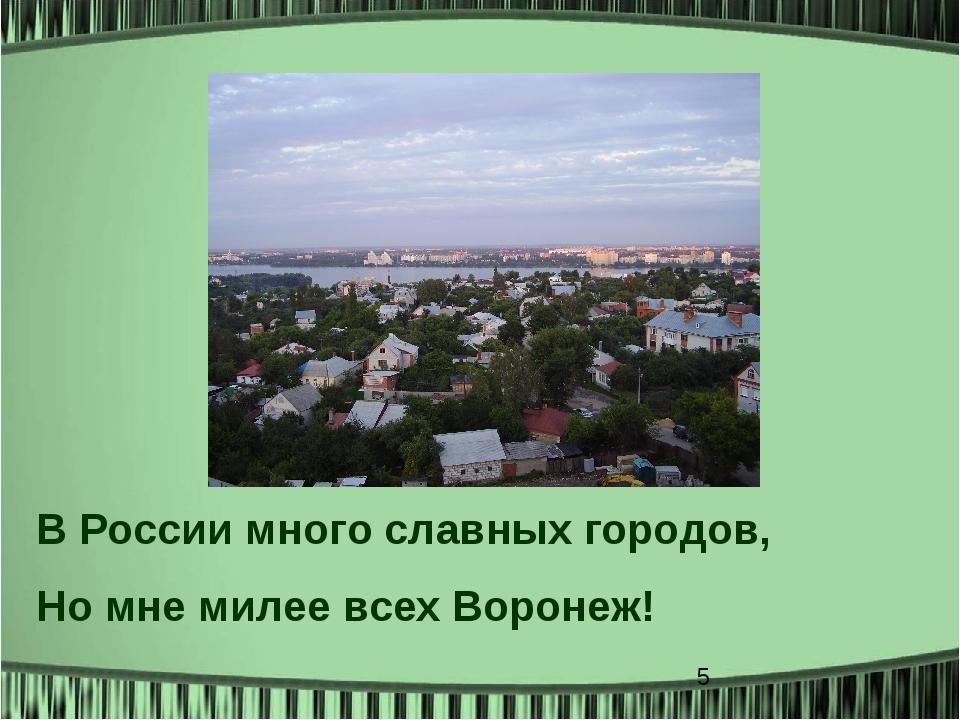В России много славных городов, Но мне милее всех Воронеж!