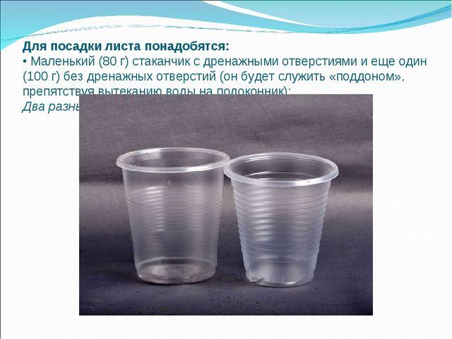 Для посадки листа понадобятся: • Маленький (80 г) стаканчик с дренажными отве...