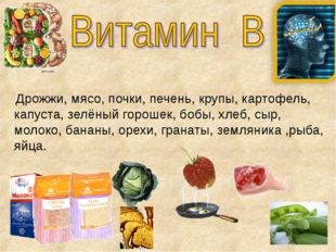 Дрожжи, мясо, почки, печень, крупы, картофель, капуста, зелёный горошек, боб