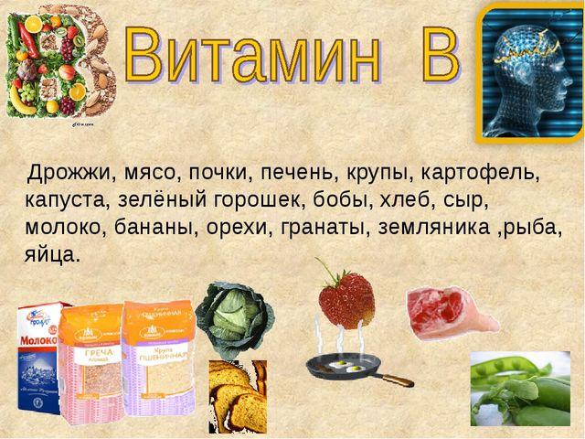 Дрожжи, мясо, почки, печень, крупы, картофель, капуста, зелёный горошек, боб...