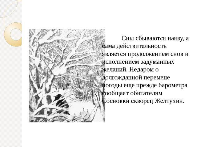 Сны сбываются наяву, а сама действительность является продолжением снов и...