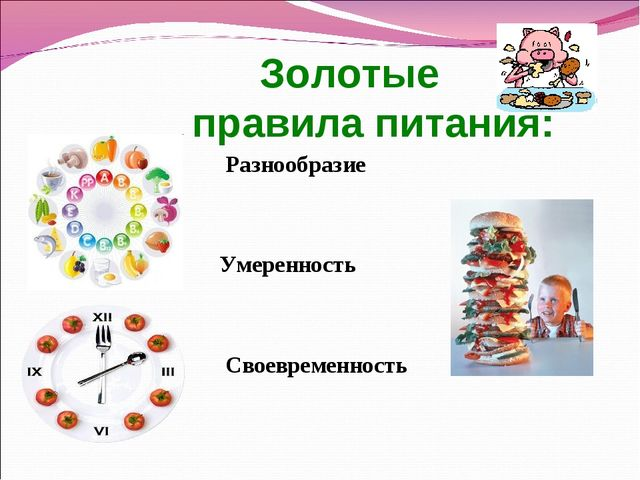 Золотые правила питания: Разнообразие Умеренность Своевременность
