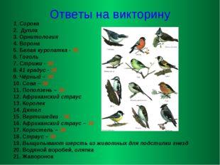 Ответы на викторину 1. Сорока 2. Дупла 3. Орнитология 4. Ворона 5. Белая куро