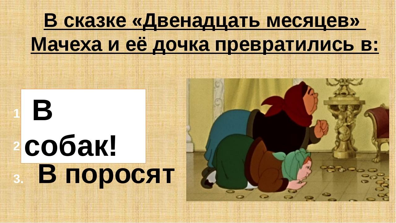 В сказке «Двенадцать месяцев» Мачеха и её дочка превратились в: В собак В кош...