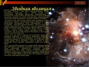 Звездная эволюция Астрономы не могут наблюдать жизнь одной звезды от начала д