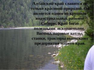 Алтайский край славится не только красивой природой. Он является одним из кру
