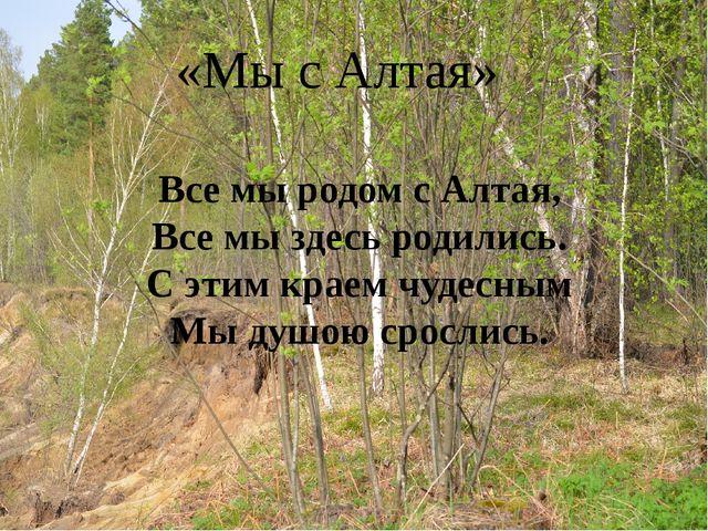 «Мы с Алтая» Все мы родом с Алтая, Все мы здесь родились. С этим краем чудесн...