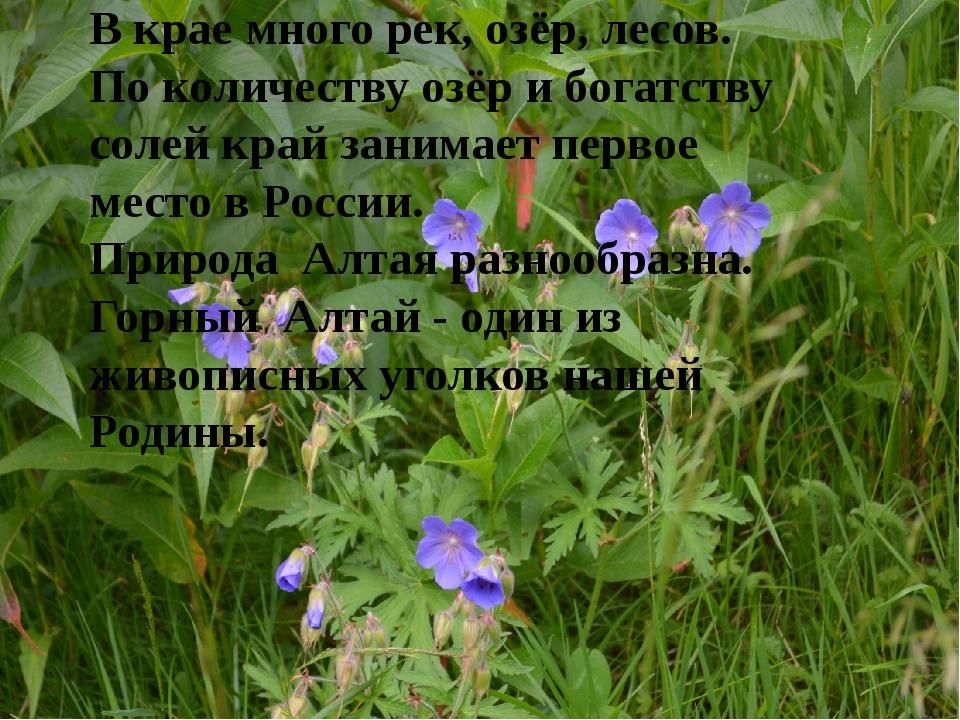 В крае много рек, озёр, лесов. По количеству озёр и богатству солей край зан...