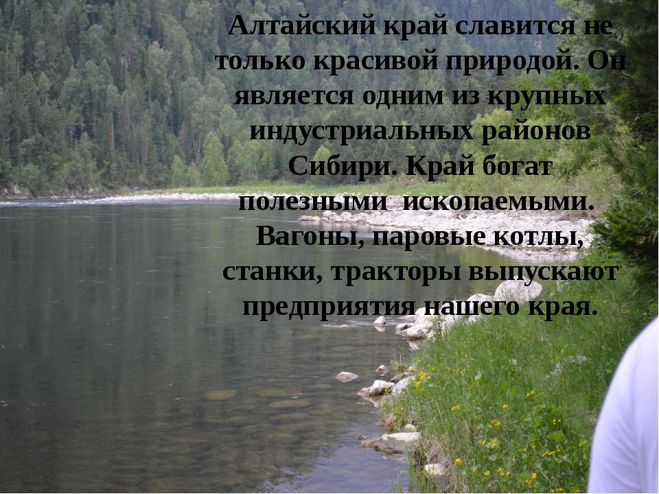 Алтайский край славится не только красивой природой. Он является одним из кру...