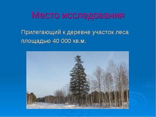 Место исследования Прилегающий к деревне участок леса площадью 40 000 кв.м.