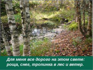 Для меня все дорого на этом свете: роща, снег, тропинка в лес и ветер.