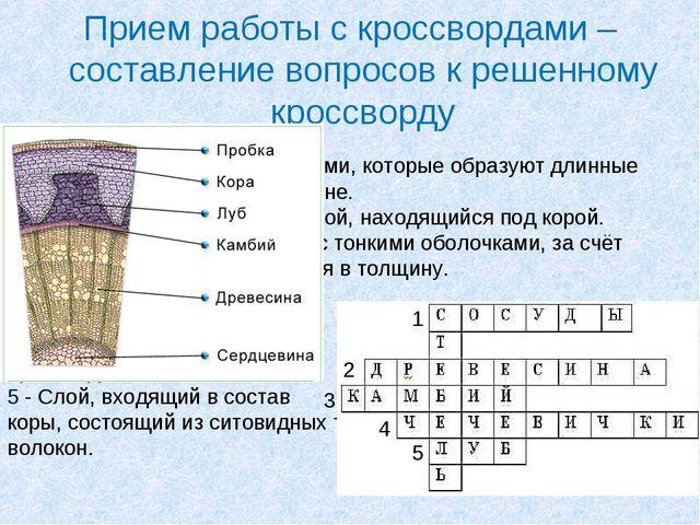 Составить кроссворд по белорусская орфография 5 класс