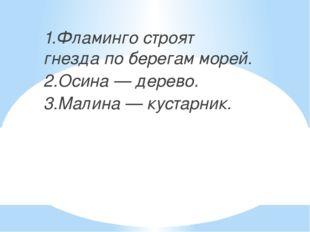 1.Фламинго строят гнезда по берегам морей. 2.Осина — дерево. 3.Малина — куст