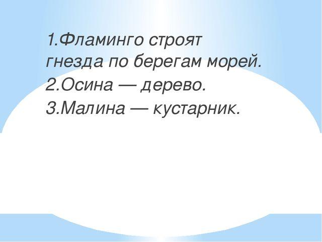 1.Фламинго строят гнезда по берегам морей. 2.Осина — дерево. 3.Малина — куст...