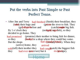 Put the verbs into Past Simple or Past Perfect Tense. After Jim and Terry (fi