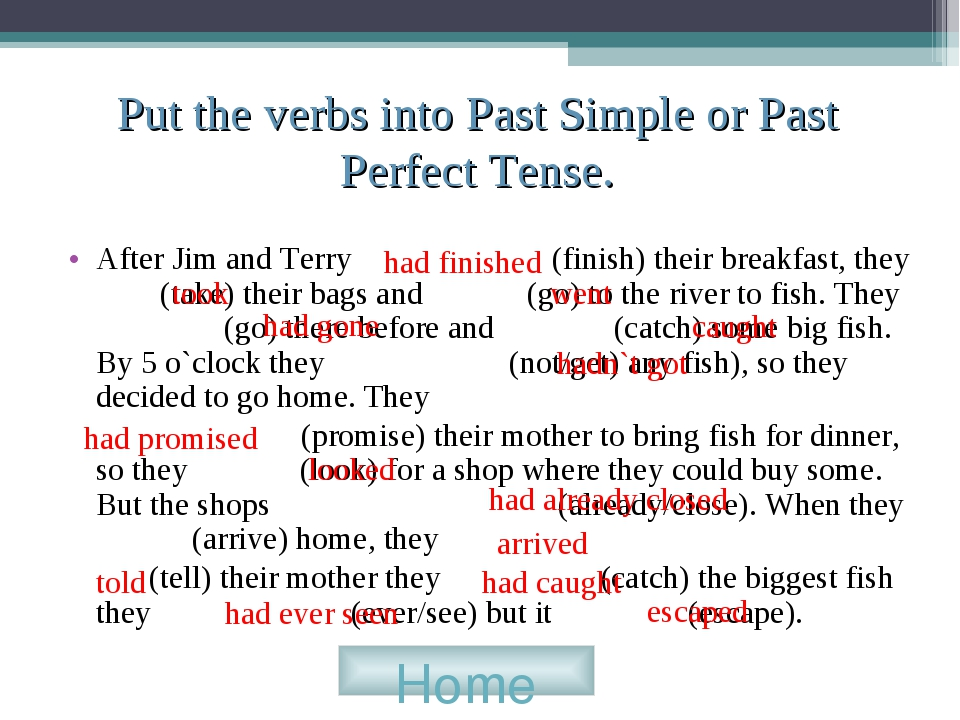 Put the verbs into Past Simple or Past Perfect Tense. After Jim and Terry (fi...