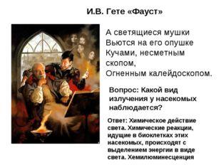 И.В. Гете «Фауст» А светящиеся мушки Вьются на его опушке Кучами, несметным с