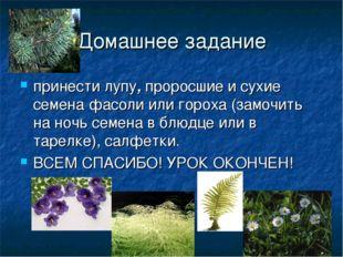 Домашнее задание принести лупу, проросшие и сухие семена фасоли или гороха (з