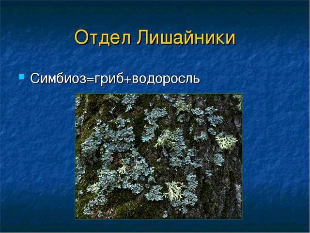 Отдел Лишайники Симбиоз=гриб+водоросль