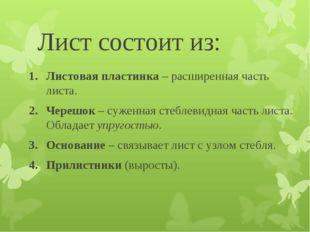 Лист состоит из: Листовая пластинка – расширенная часть листа. Черешок – суже