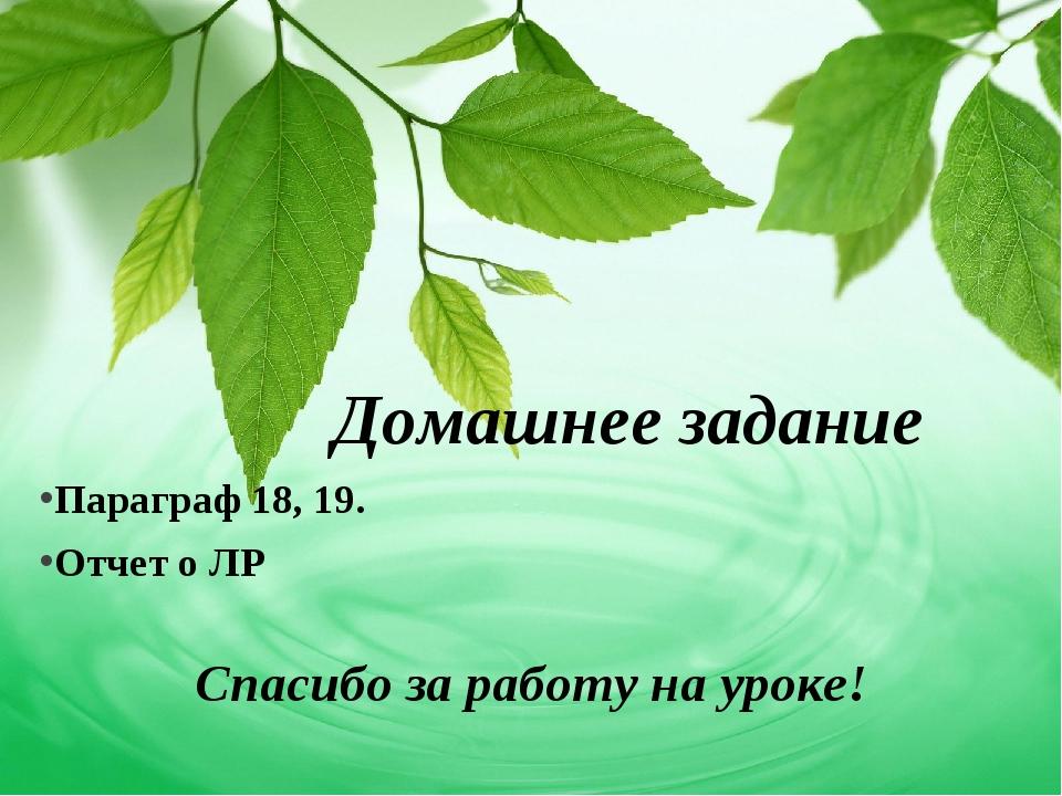 Домашнее задание Параграф 18, 19. Отчет о ЛР Спасибо за работу на уроке!