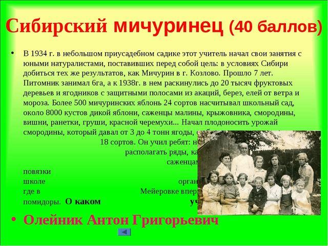 Сибирский мичуринец (40 баллов) В 1934 г. в небольшом приусадебном садике это...