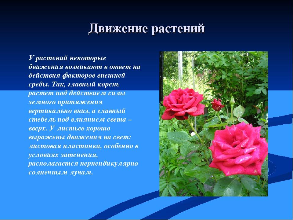 Движение растений У растений некоторые движения возникают в ответ на действия...