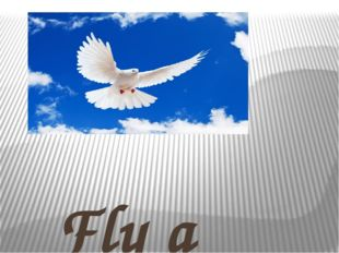 Fly a little bird fly, Fly into the blue sky, 1,2,3 you are free.