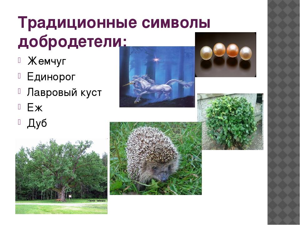 Традиционные символы добродетели: Жемчуг Единорог Лавровый куст Еж Дуб